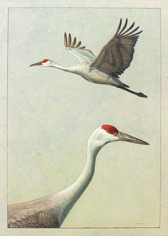 Wall Art Poster Home Decor Sand Hill Crane Art//Canvas Print