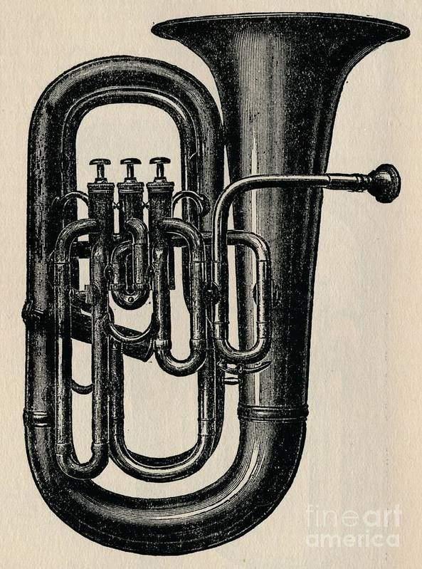 Music Art Print featuring the drawing The Euphonium by Print Collector