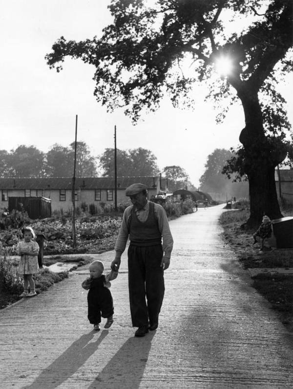 Toddler Art Print featuring the photograph Walking In Sunshine by Bert Hardy