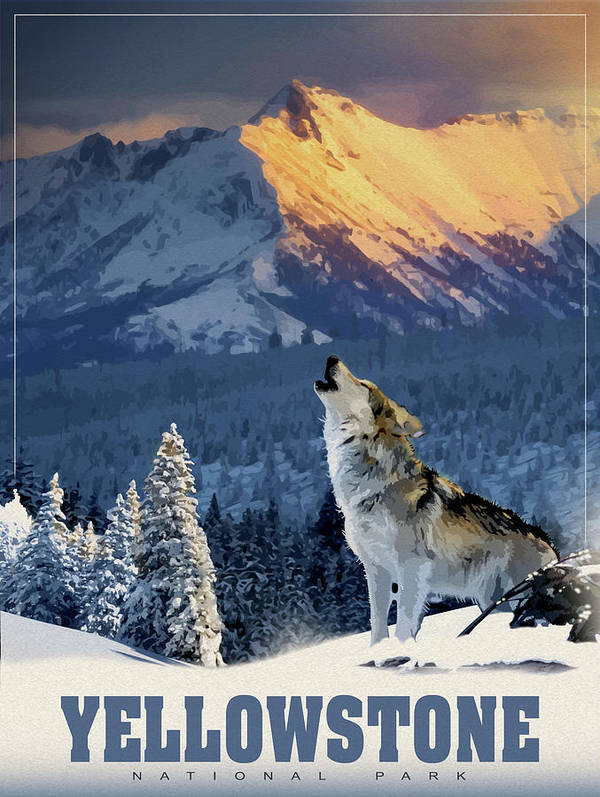 Yellowstone Wolf Art Print featuring the mixed media Yellowstone Wolf by Old Red Truck