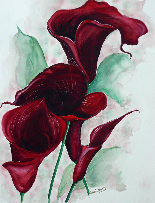 Flower Painting Floral Painting Botanical Painting Tropical Painting Caribbean Painting Calla Painting Red Lily Painting Deep Red Calla Lilies Original Watercolor Painting Art Print featuring the painting Black Callas by Karin Dawn Kelshall- Best