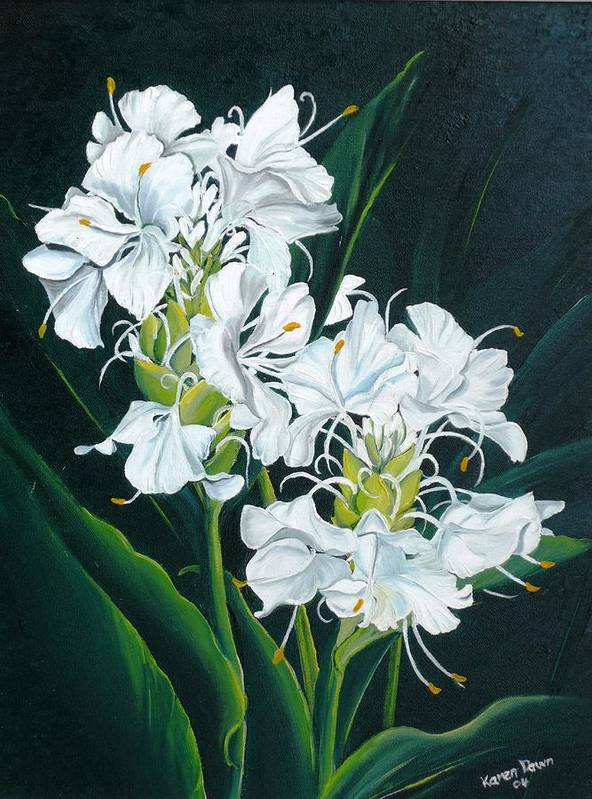 Caribbean Painting Butterfly Ginger Painting Floral Painting Botanical Painting Flower Painting Water Ginger Painting Or Water Ginger Tropical Lily Painting Original Oil Painting Trinidad And  Tobago Painting Tropical Painting Lily Painting White Flower Painting Art Print featuring the painting Butterfly Ginger by Karin Dawn Kelshall- Best
