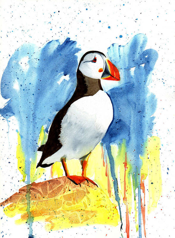 Colorful Puffin Watercolor Portrait by Margaret Bucklew