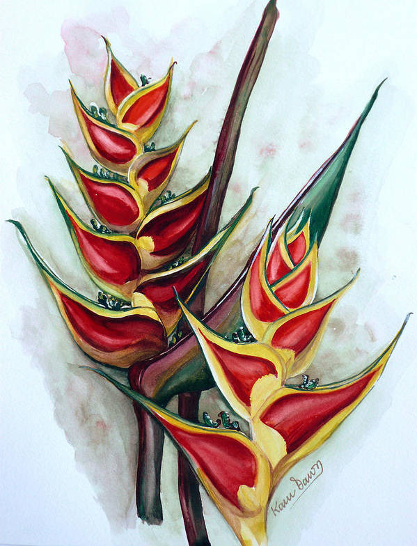 Caribbean Painting Flower Painting Floral Painting Heliconia Painting Original Watercolor Painting Of Heliconia Bloom  Trinidad And Tobago Painting Botanical Painting Art Print featuring the painting Heliconia Tropicana Trinidad by Karin Dawn Kelshall- Best
