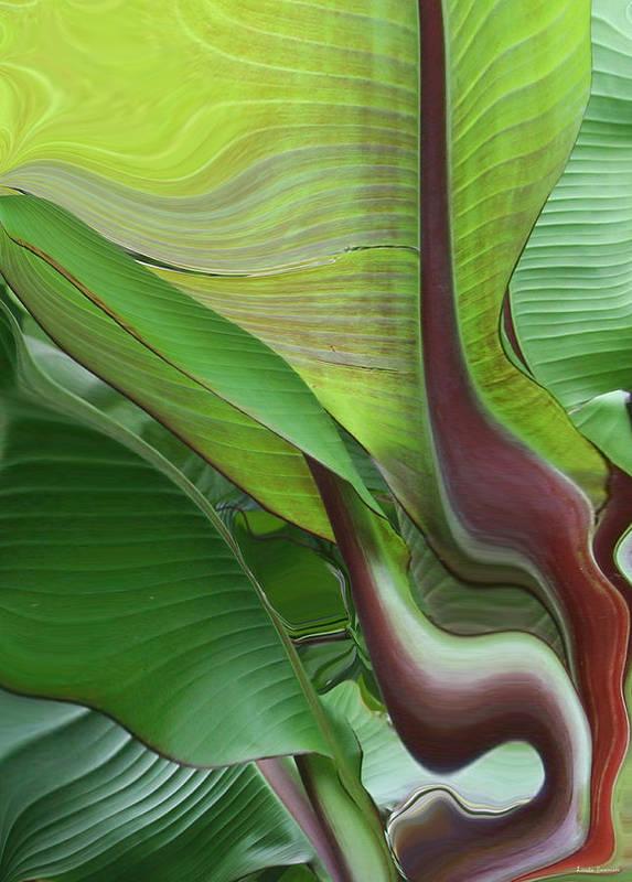 Plant Art Print featuring the photograph Plantflow by Linda Sannuti