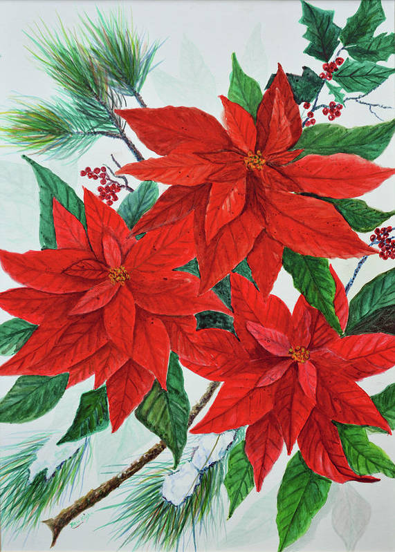 Poinsettias Art Print featuring the painting Poinsettias by Ben Kiger