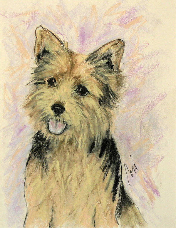 Dog Art Print featuring the drawing Soulmate by Cori Solomon