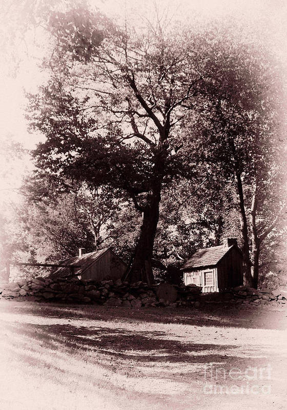 Black And White Art Print featuring the photograph The Farm Bristol Rhode Island by Tom Prendergast