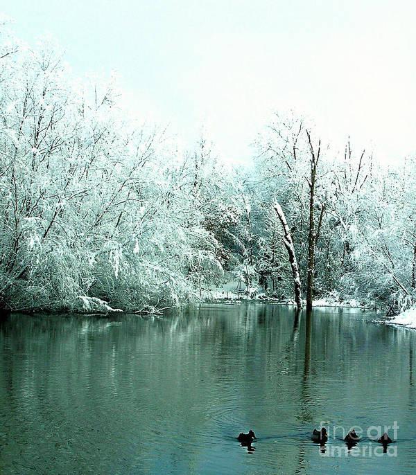 Ducks Art Print featuring the photograph Ducks On A Snowy Pond by Tisha Clinkenbeard