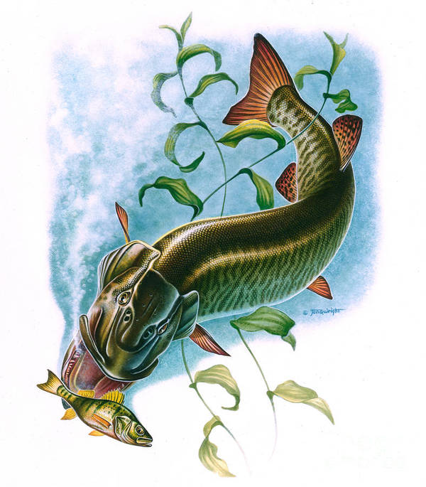 On Q Wright Art Print featuring the painting Musky Vignette by Jon Q Wright