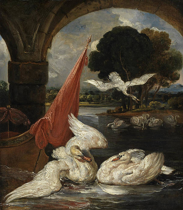 Swan Art Print featuring the painting The Descent Of The Swan, Illustration by James Ward