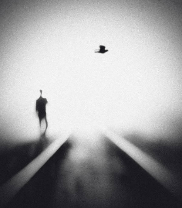 Rail Art Print featuring the photograph Nocturne by Hengki Lee