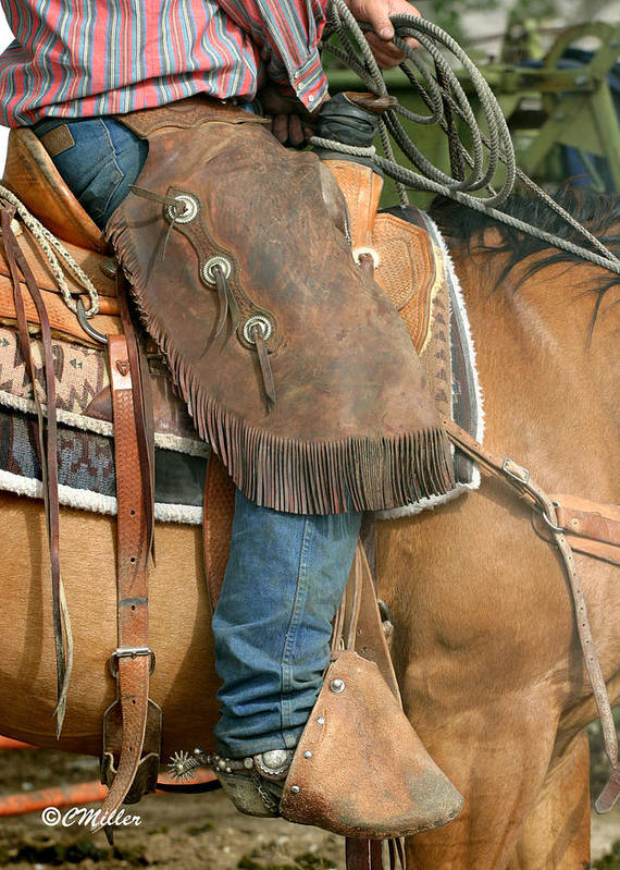 Cowboy Art Print featuring the photograph Dressed For Work.. by Carol Miller