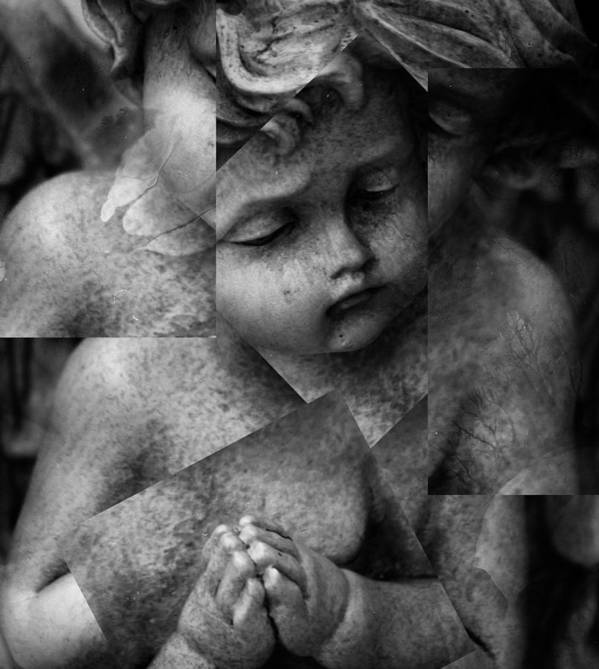 Seraphim Art Print featuring the photograph Silence Of A Seraphim by The Artist Project