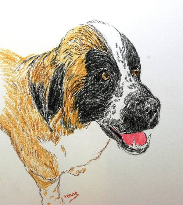 Pencil Art Print featuring the drawing Maggie by David Keene