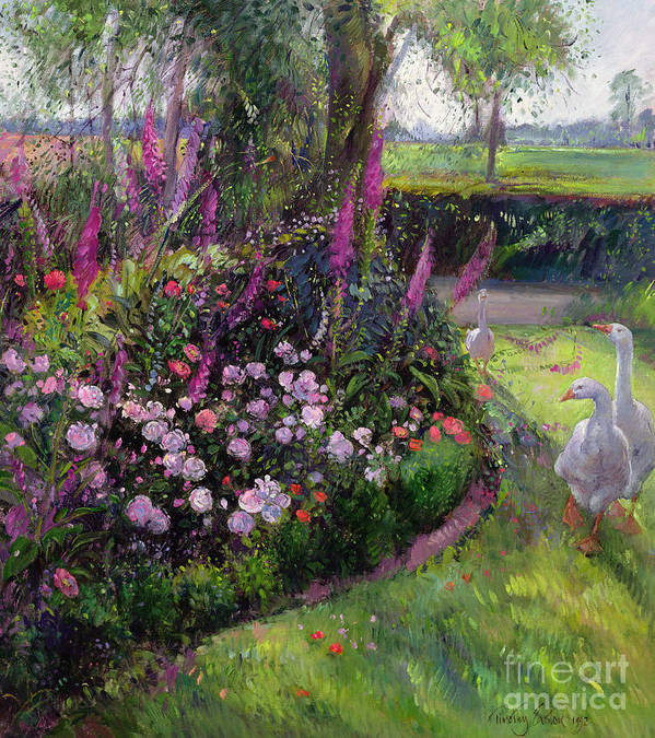 Landscape; Poultry; Foxglove; Country Garden;rural; Goose; Geese; Flower; Flowers; Garden; Tree; Trees Print featuring the painting Rose Bed And Geese by Timothy Easton