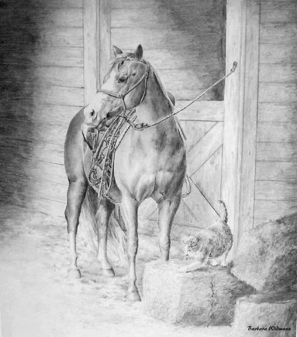 Horse Art Print featuring the drawing Waiting To Ride by Barbara Widmann