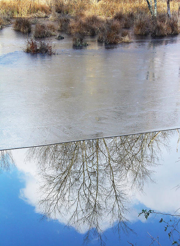 Fine Arts Greeting Cards Art Print featuring the photograph Nature Draws Its Line With Its Ice by Terrance DePietro