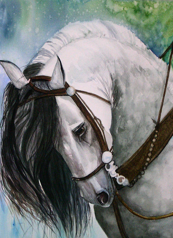 Andalusian Art Print featuring the painting Renaldo by Gina Hall