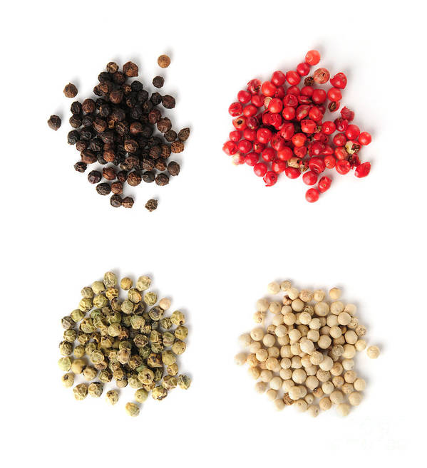 Peppercorns Art Print featuring the photograph Assorted Peppercorns by Elena Elisseeva
