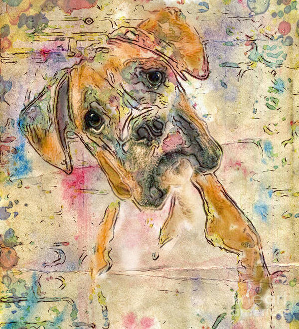 Boxer Art Print featuring the digital art Boxer Babe by Marilyn Sholin