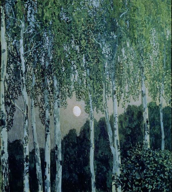 Birch Trees (oil On Canvas) By Aleksandr Jakovlevic Golovin (1863-1930) Art Print featuring the painting Birch Trees by Aleksandr Jakovlevic Golovin