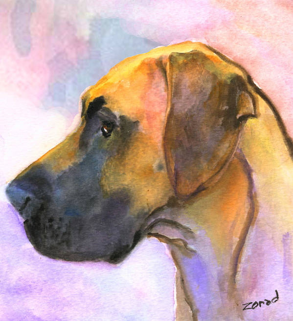 Dog Art Art Print featuring the painting Great Dane by Mary Jo Zorad