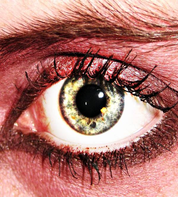 Eye Art Print featuring the photograph Something In The Eye by Qb Whitener