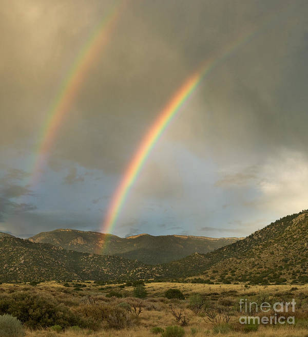 Sandia Art Print featuring the photograph Double Rainbow In Desert by Matt Tilghman