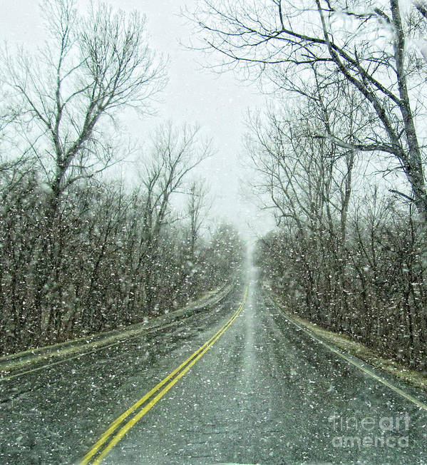Snow Art Print featuring the photograph Road In The Snow by Carolyn Fox
