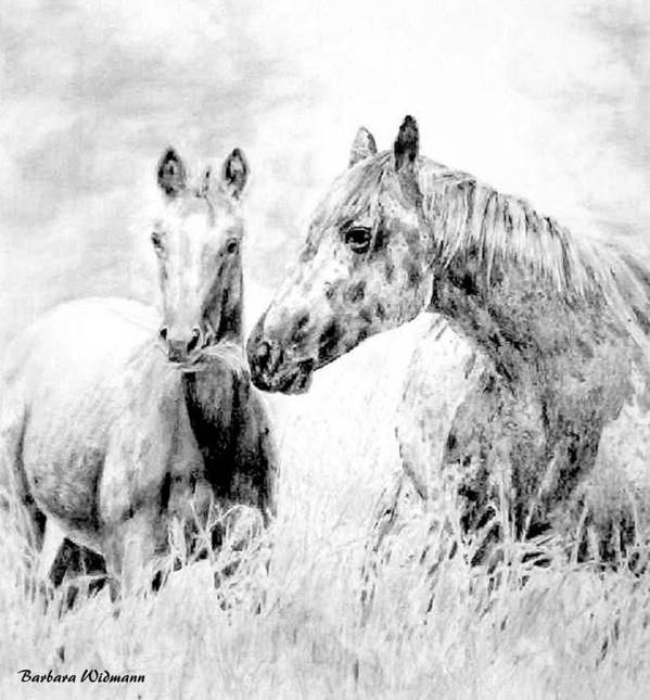 Horses Art Print featuring the drawing Grazing by Barbara Widmann