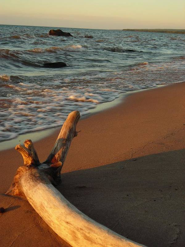 Beach Art Print featuring the photograph All alone by Peter Mowry