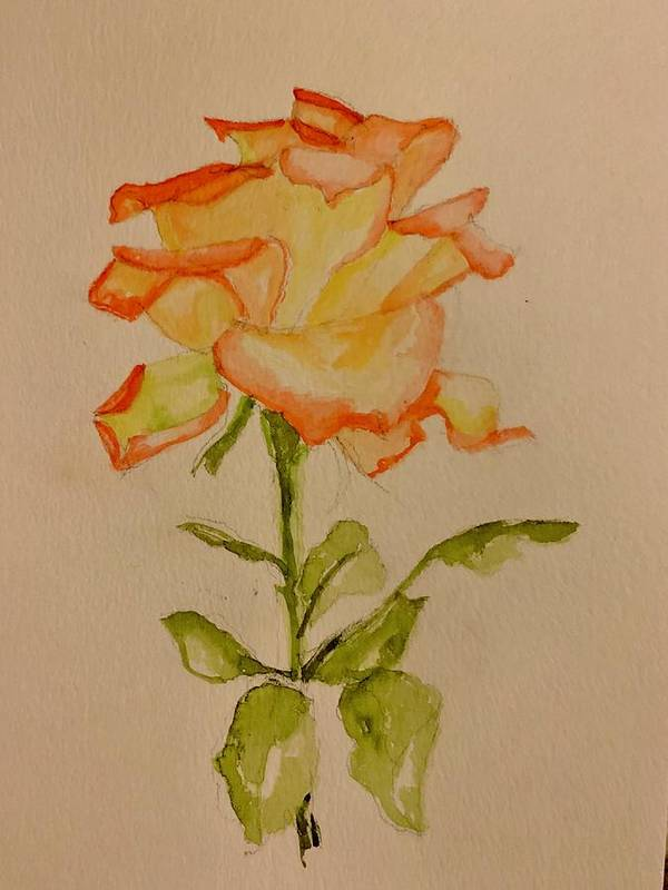 Rose Art Print featuring the painting A Rose by Patricia Halstead