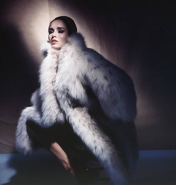 Studio Shot Art Print featuring the photograph Sondra Peterson Wearing Fur Coat by Horst P. Horst
