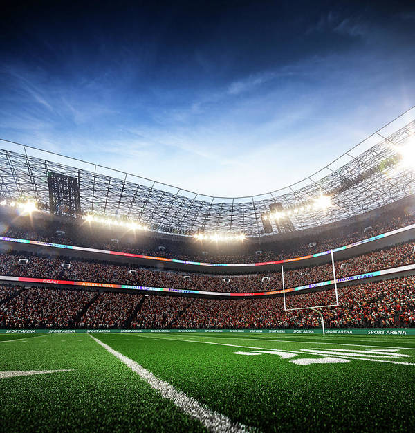 Financial Figures Art Print featuring the photograph American Football Stadium Arena Vertical by Sarhange1