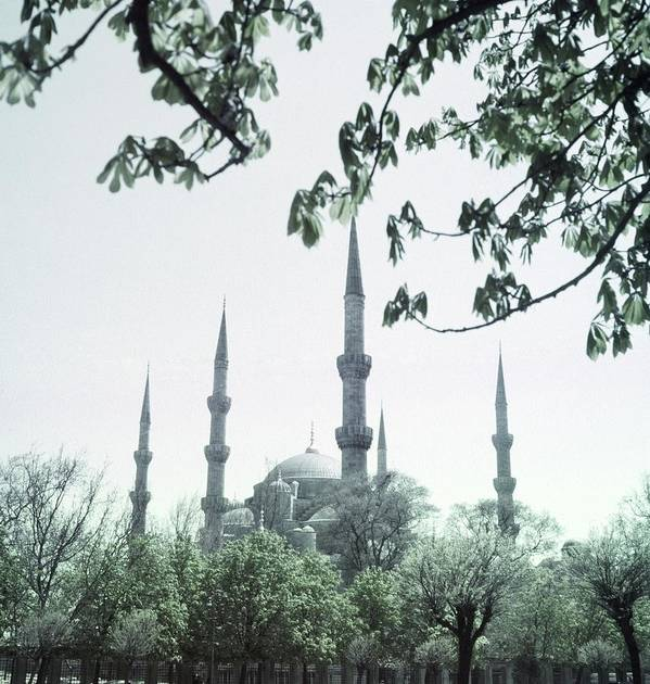 Turkey Art Print featuring the photograph Mosque Behind Trees In Turkey by Horst P. Horst