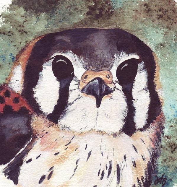 Raptor Art Print featuring the painting American Kestrel by Debra Sandstrom