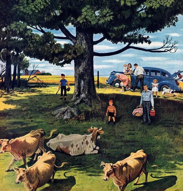 Country Art Print featuring the drawing Shoo The Moos by Stevan Dohanos