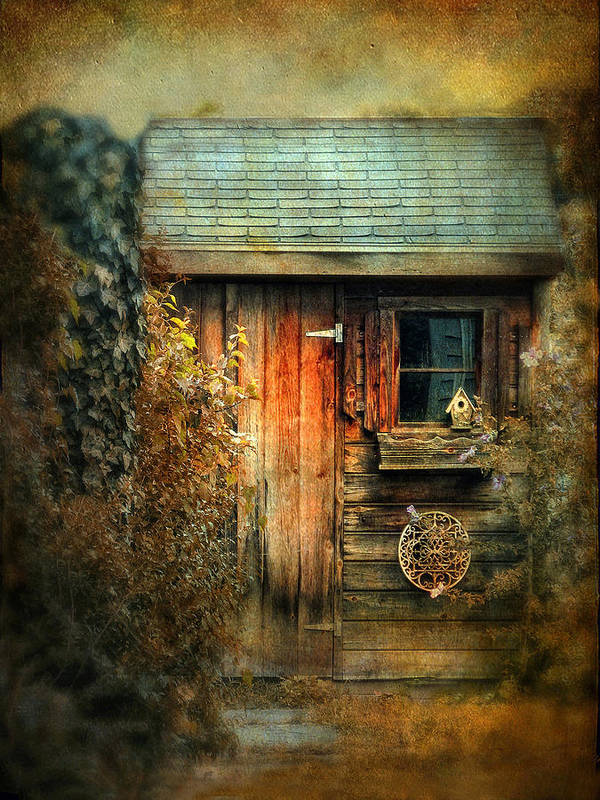 Shed Print featuring the photograph The Shed by Jessica Jenney
