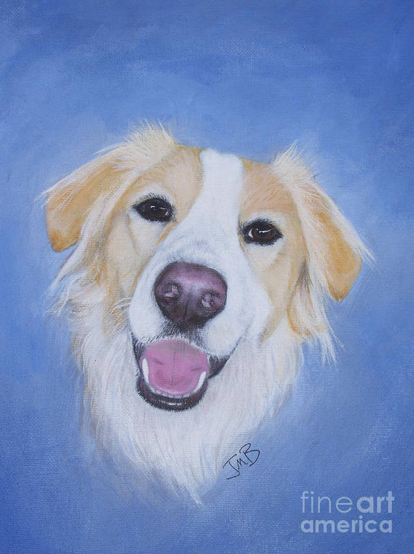 Dog Art Print featuring the painting My Blonde Border Collie by Janice M Booth