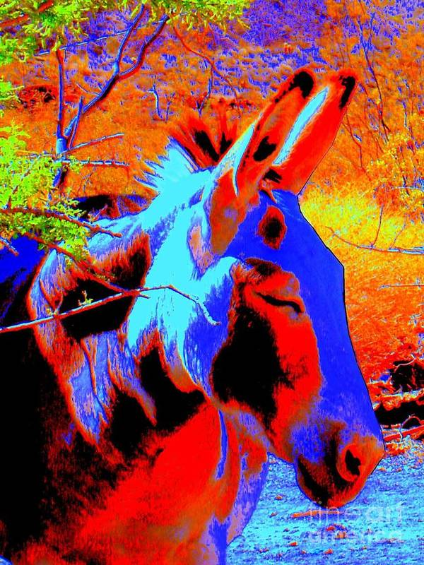 Burro Art Print featuring the photograph Oatman Burro by Lessandra Grimley