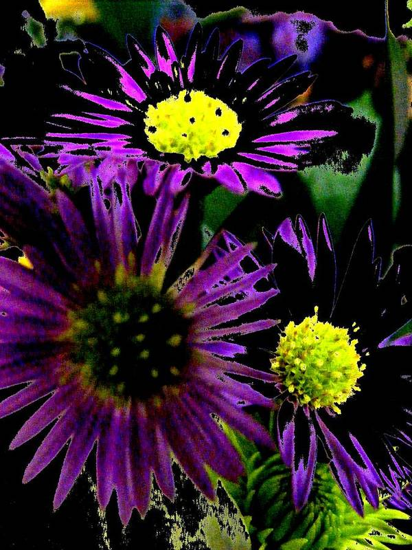 New Art Print featuring the digital art Floral 81 by Chuck Landskroner
