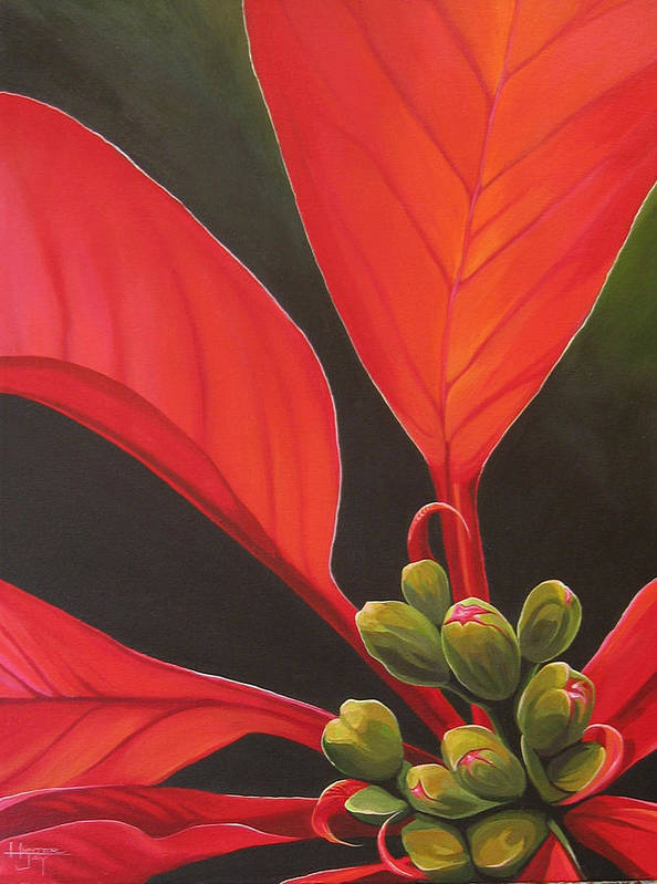Poinsettia Closeup Art Print featuring the painting Red Velvet by Hunter Jay