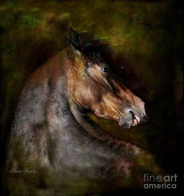 Horse Art Print featuring the photograph Bay Dignity by Dorota Kudyba