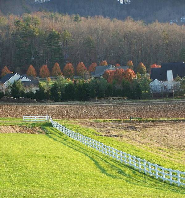 Farm Print featuring the photograph Near Lake Lure Nc by Kathy Budd