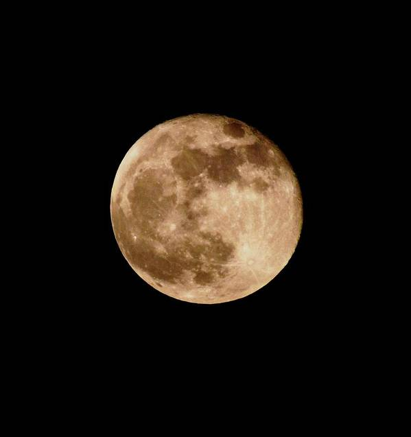 Moon Art Print featuring the photograph The Super Moon by William Walker