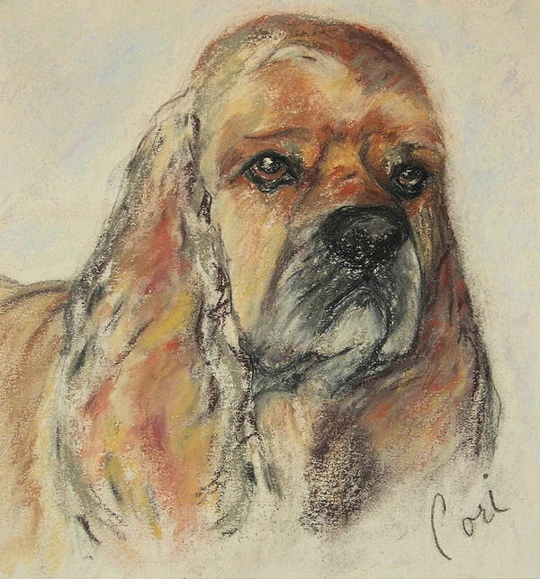 Dog Art Print featuring the drawing Serious Intent by Cori Solomon