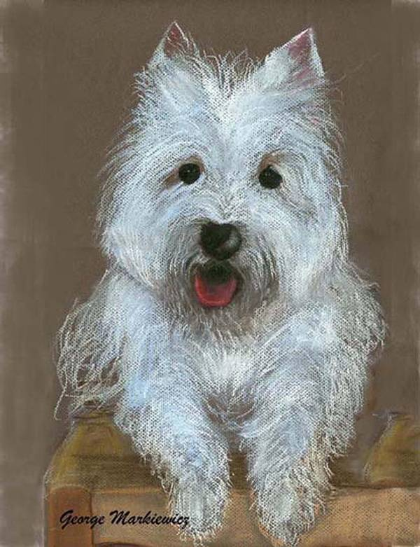 Dog Art Print featuring the print Marilyn by George Markiewicz