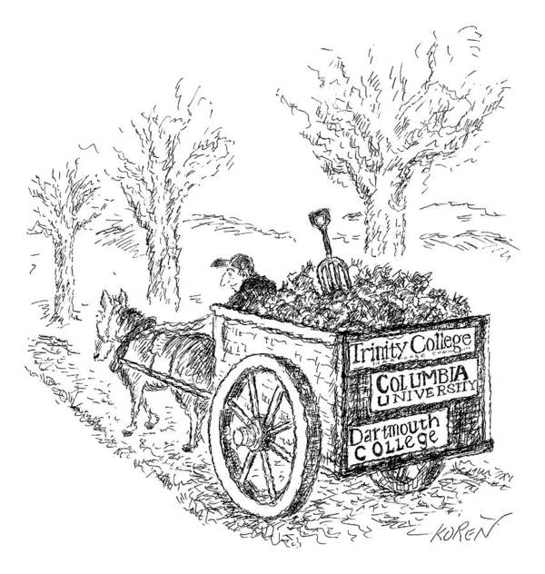 Bumper Stickers Art Print featuring the drawing A Man Drives A Horse-drawn Cart With Bumper by Edward Koren