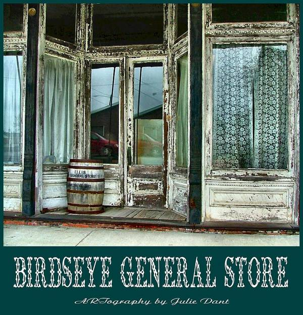 Birdseye Art Print featuring the photograph Birdseye General Store by Julie Dant